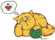 Gra Kot na diecie