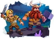 Détails du jeu Viking Brothers 5